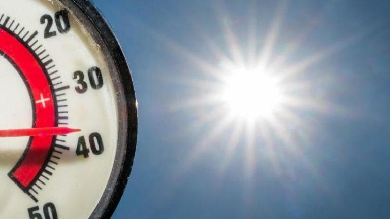وزارت: 2020 دومین سال گرم در براندنبورگ بود
